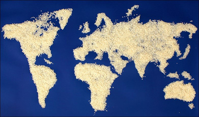 Rice World Map