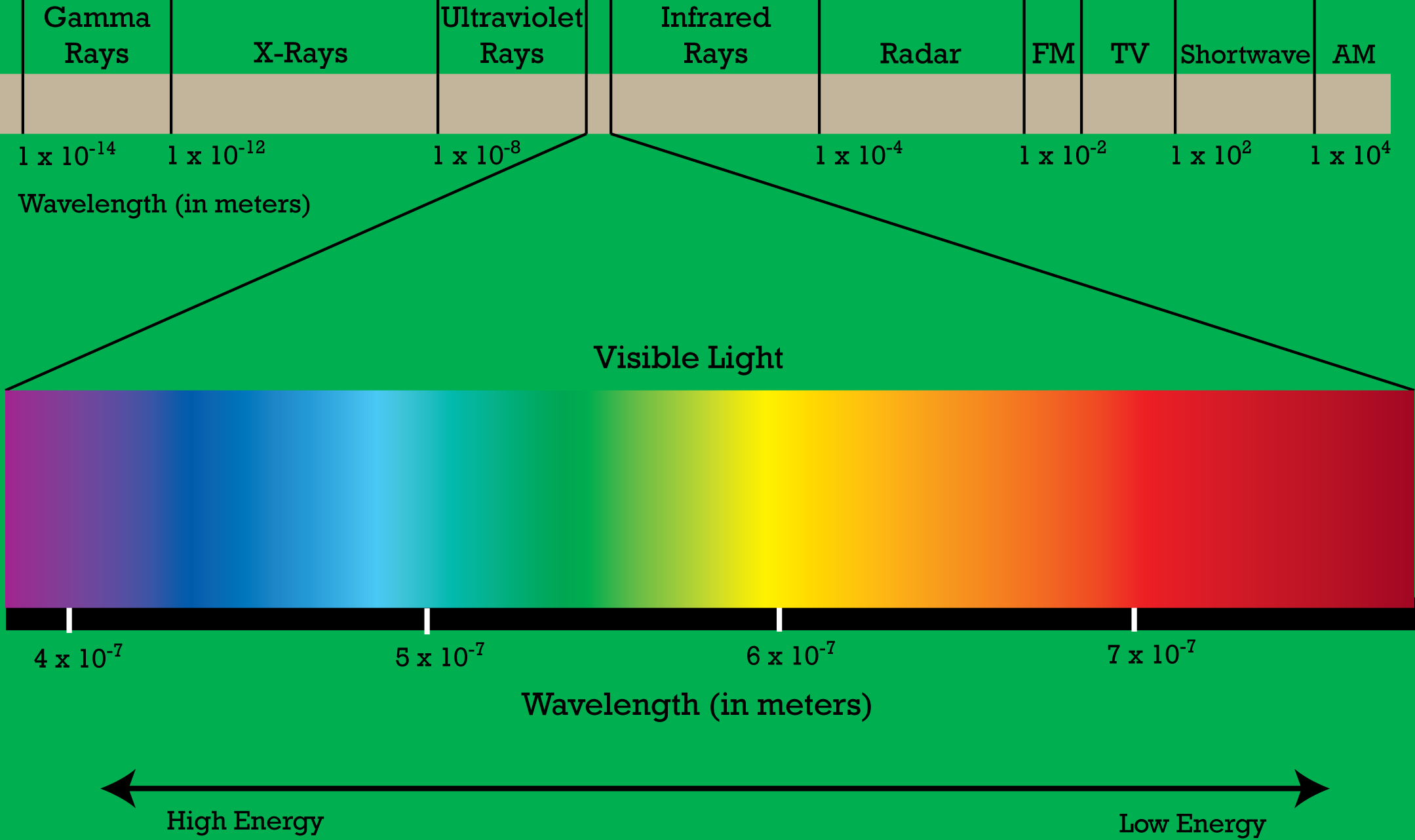 electro magnetic spectrum The electromagnetic spectrum is the range of all possible wavelengths of electromagnetic radiation, ranging from high energy gamma rays through visible light and down.