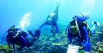 Oceanography