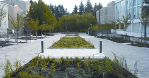 Integrated Storm Water Management Plan